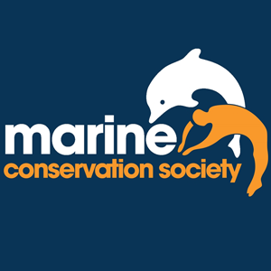 marine conservation Book now for august/september 2018 to receive a 10% discount here in the beautiful maldives, we are lucky enough to be surrounded by an abundance of tropical marine life, including five species of sea turtle.
